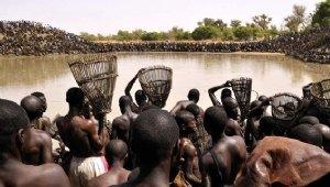 Afrika'da balık tutma festivali
